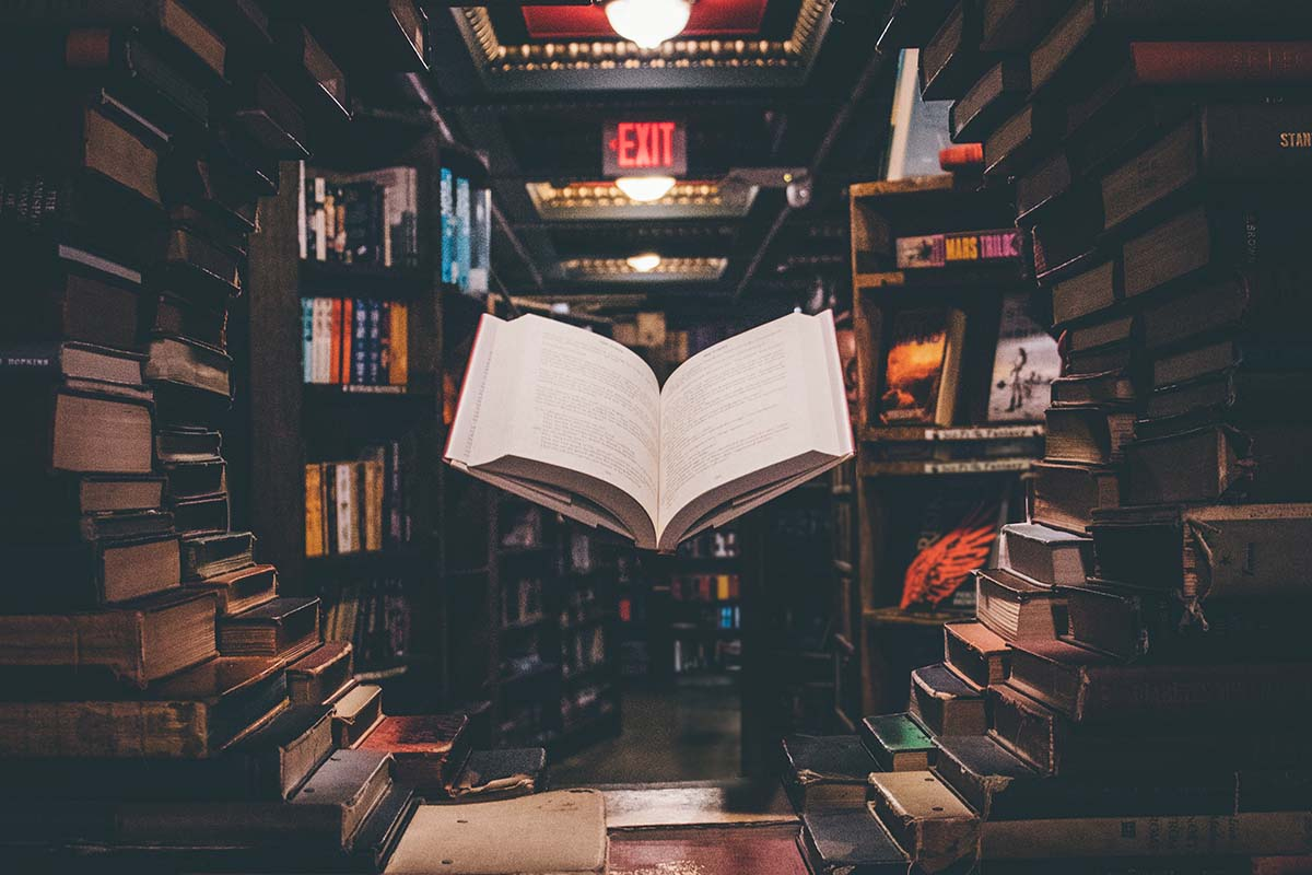 Literatura experimental-monografic